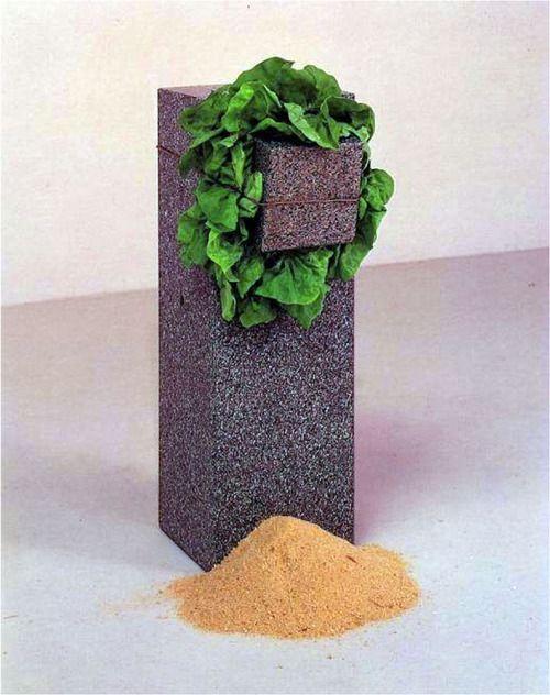 ARTE POVERA. – Sem título (Estrutura que come), 1968, de Giovanni Anselmo; pé de alface entre dois blocos de granito fi xado por um fi o de cobre e serragem no chão