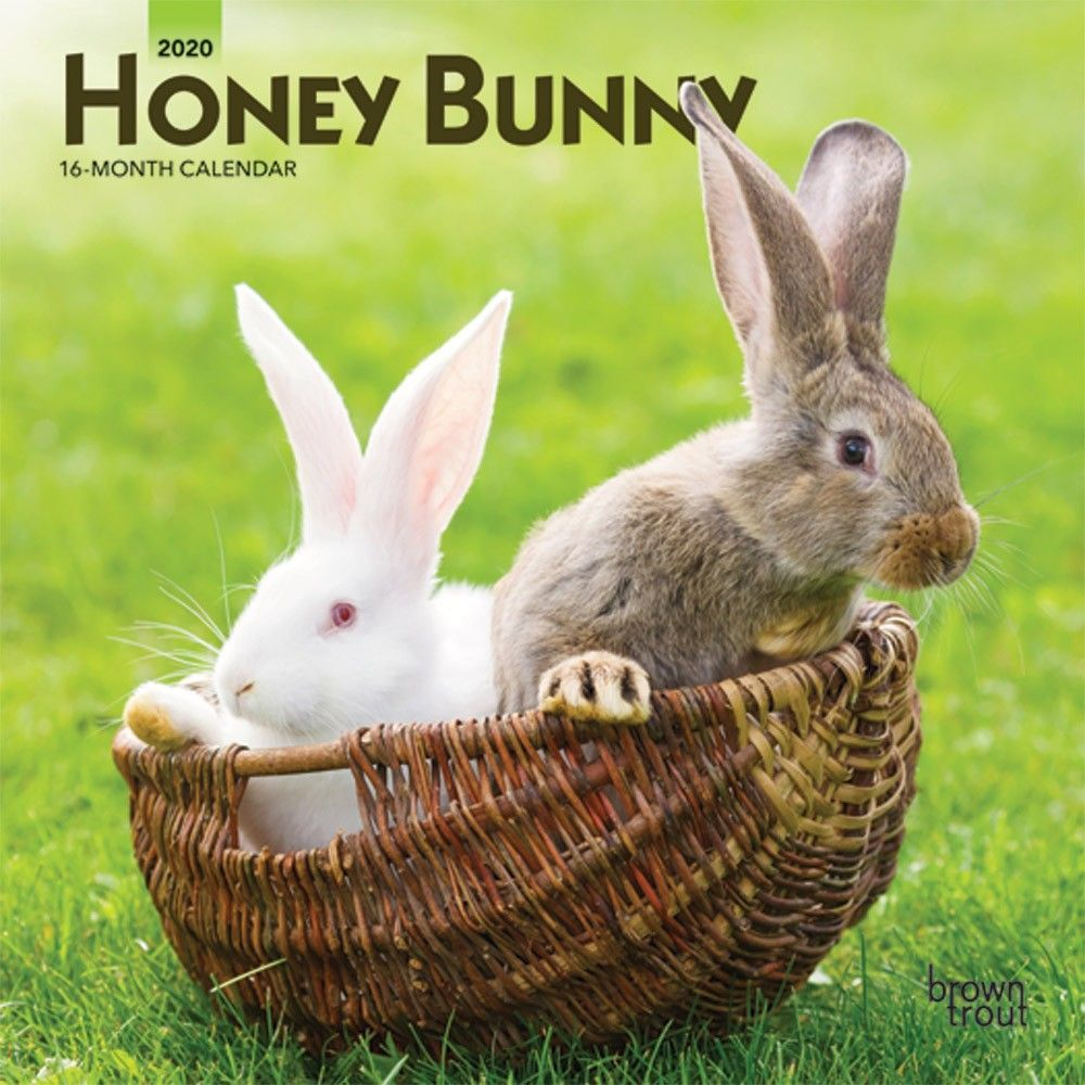 Honey Bunny 2020 7 x 7 Inch Monthly Mini Wall Calendar