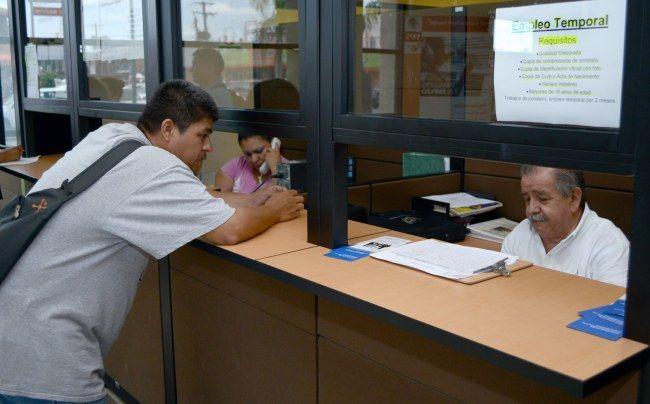 Reciben 450 solicitudes para programa de empleo temporal   Agencia Informativa-Oficina de Corresponsales