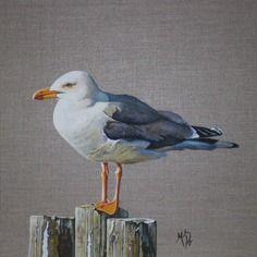 Animal Oiseau Bord De Mer Goeland Bois Peinture Oiseau