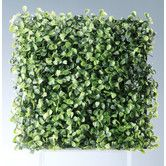 Found it at Wayfair - Boxwood Square Hedge