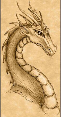 Fur Katharina Schwester Dragon Drawing Dragon Sketch Dragon Art