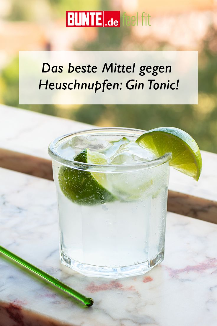 Gin Heuschnupfen