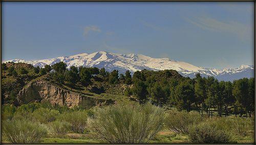 Picón de Jérez - Sierra Nevada