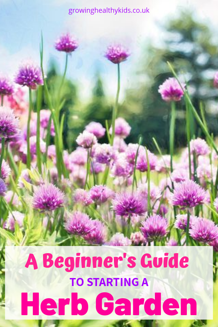 A Beginner S Guide To Starting A Herb Garden Easy Herbs 400 x 300