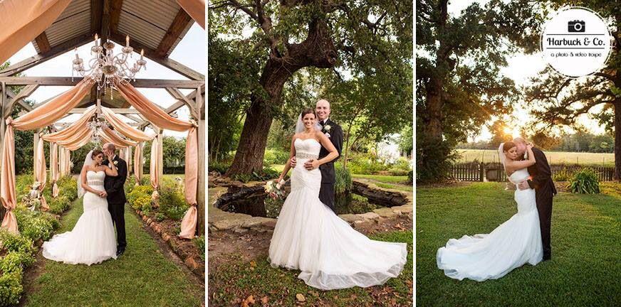 Elmwood Gardens, Palestine TX wedding venue, Harbuck & Co
