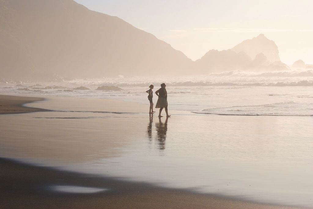 News from Marin County: Limantour Beach