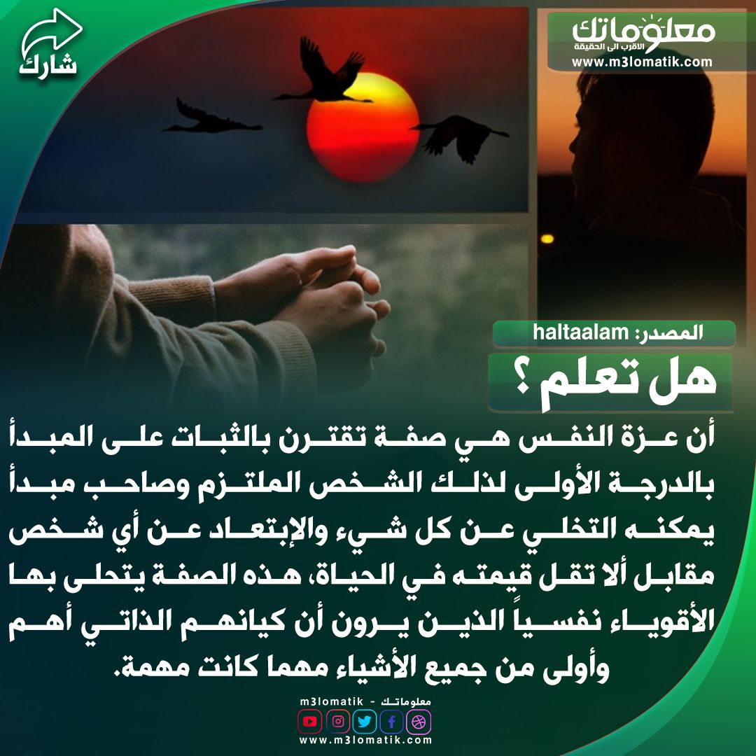 عزة النفس Movies Movie Posters Poster