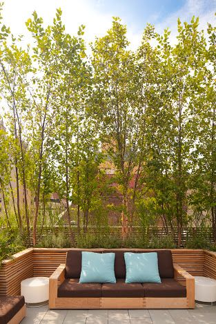roof terrace privacy screens - Google Search | Holland house ...