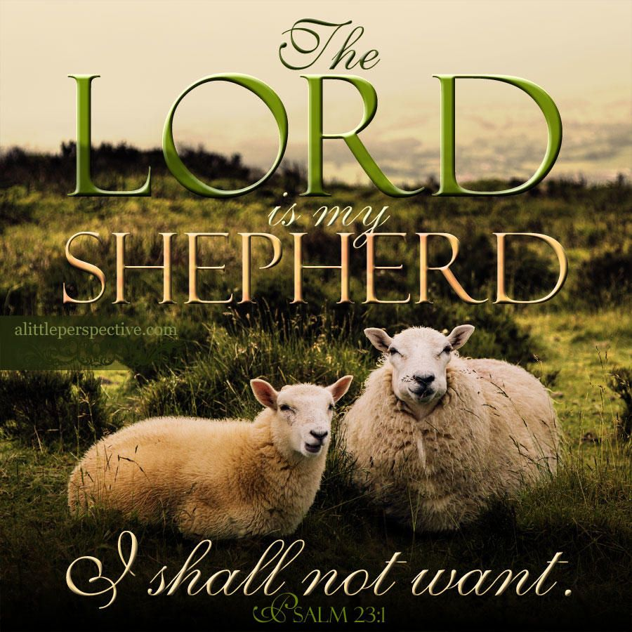 The LORD is my shepherd; I shall not want. Psalm 23:1 | scripture pictures  at alittleperspective.com