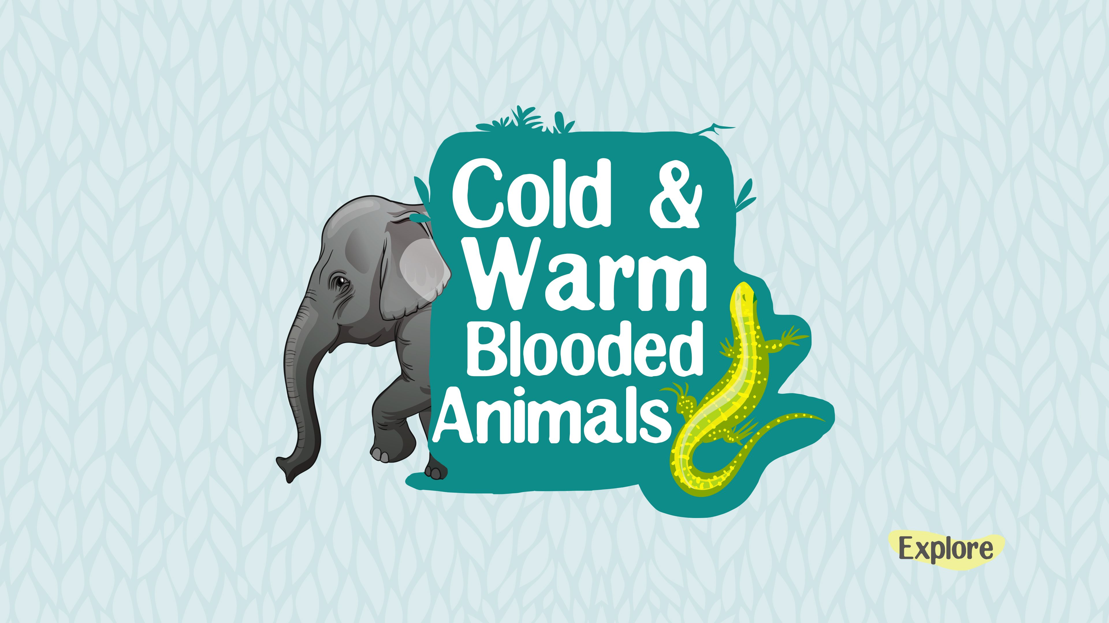 Cold Blooded And Warm Blooded Animals