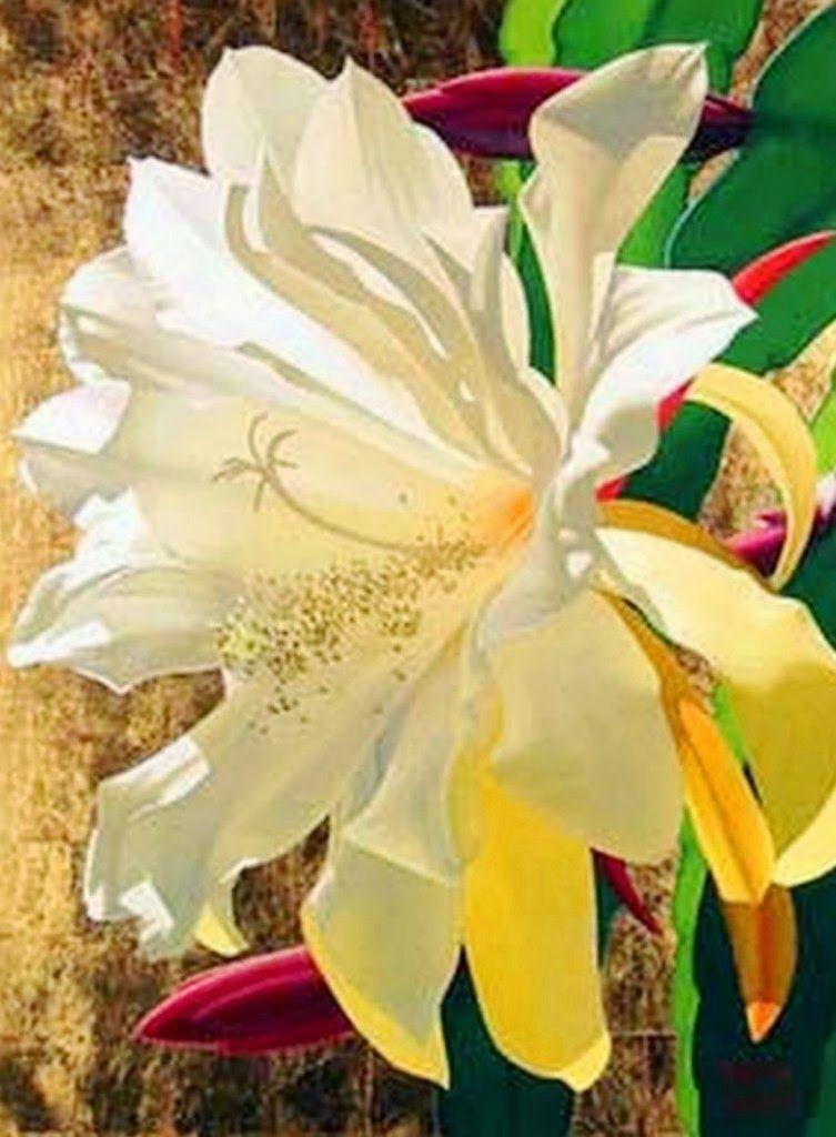 encuentra este pin y muchos ms en flores para pintar de madelca