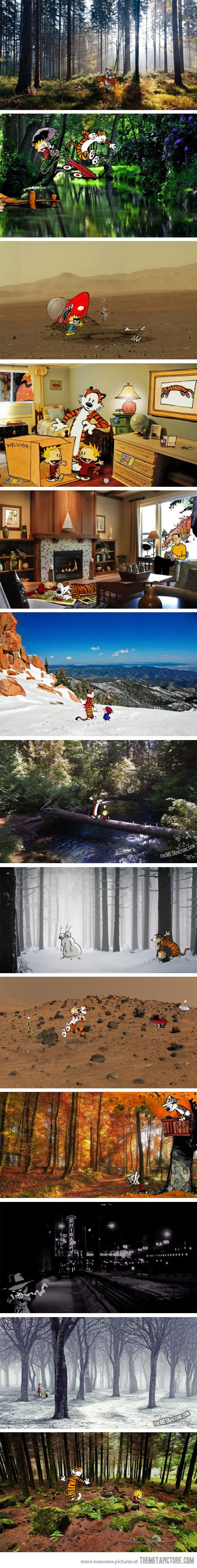 Calvin and Hobbes in real locations… love this so much!
