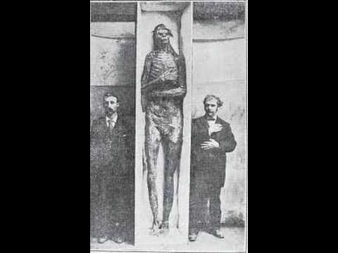 nephilim chronicles: giant human skeletons: a photographic montage, Skeleton