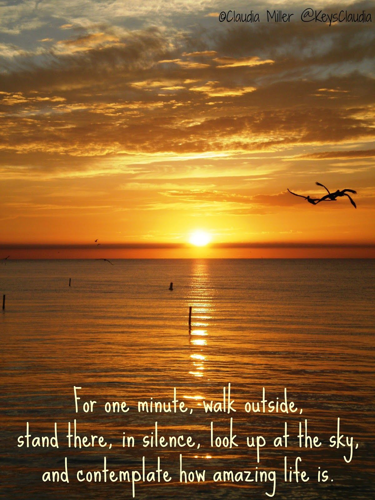 Saturday Morning Sunrise From Islamorada Quotes Pinterest