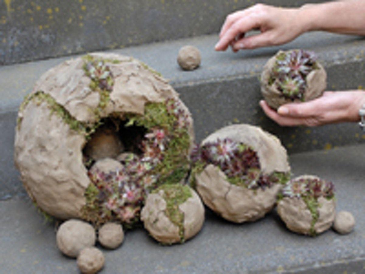 Bildergebnis für herfstbloemstukken