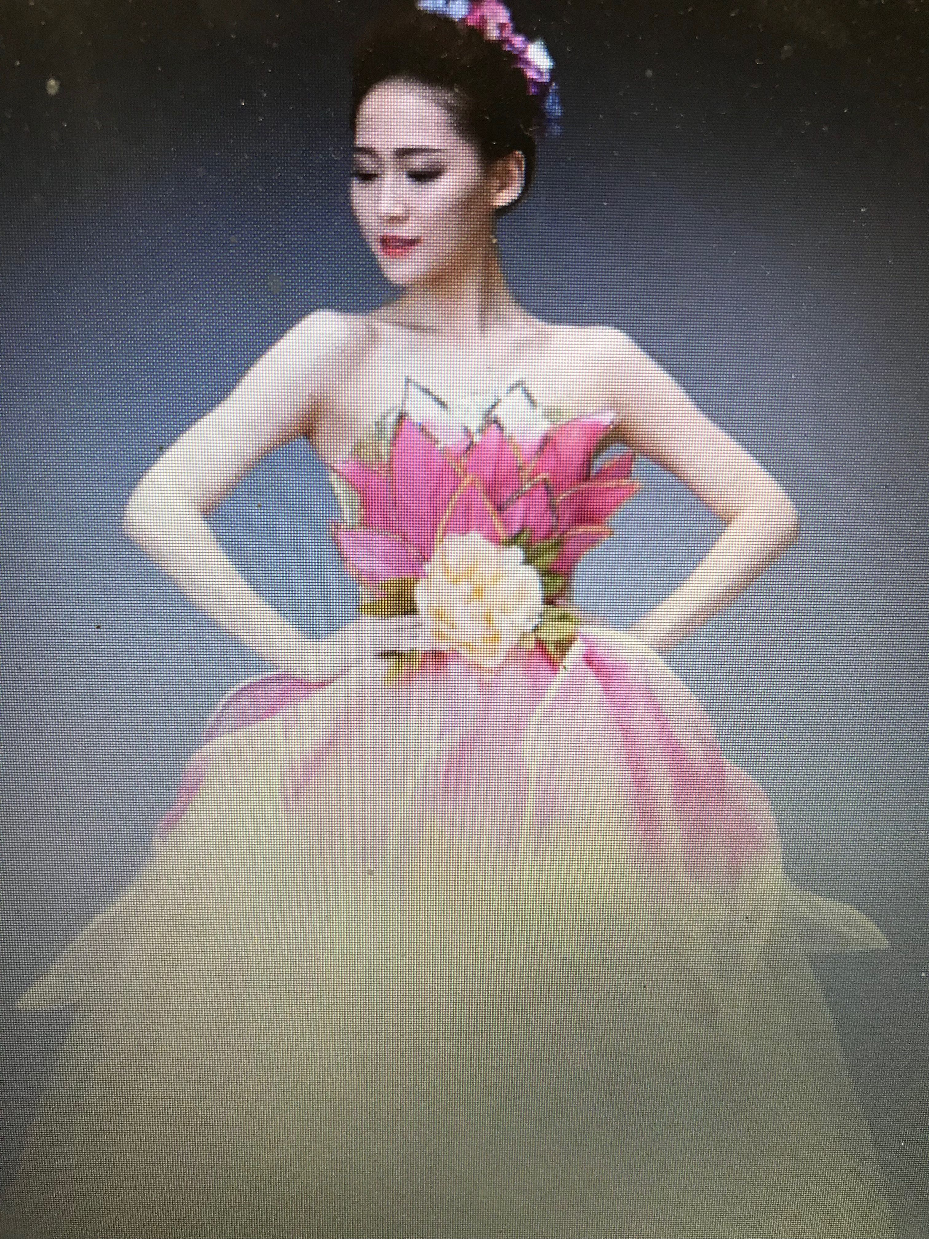 Lotus Flower Costume Idea 2 Jungle Book Flower Costume Lotus