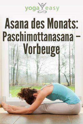 asana des monats paschimottanasana  die vorbeuge  yoga