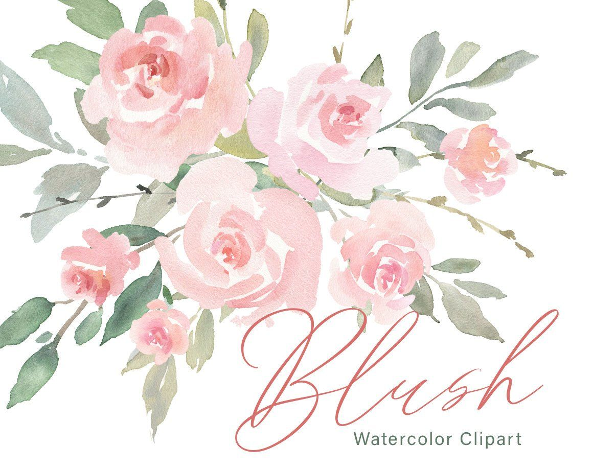 Pink Watercolor Floral Clipart Free Commercial Use Blush Light