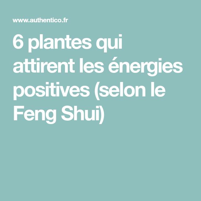 6 plantes qui attirent les nergies positives selon le feng shui rem des naturels feng - Plante d interieur porte bonheur ...