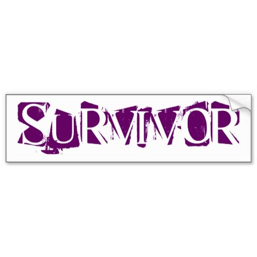 Sold 1 survivor domestic violence bumper sticker