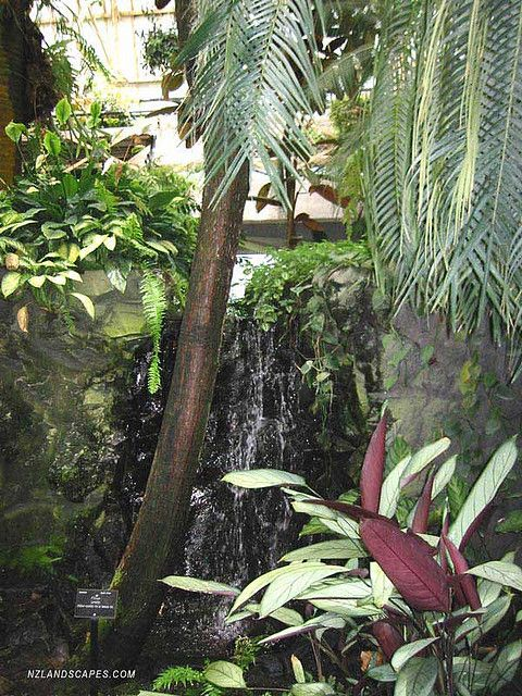 Landscaping Ideas For Nz Gardens And Landscapes Indoor Tropical