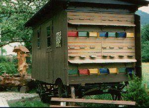 Swiss bee house design