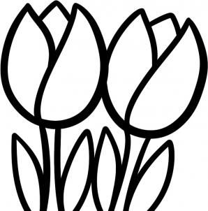 How To Draw Tullips For Kids Step 7 Easy Flower Drawings Flower Drawing For Kids Tulip Drawing