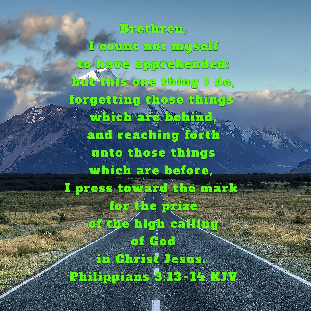 Philippians 3:13-14 KJV | Faith verses, King james bible, Philippians