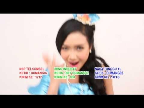 Download Lagu Dan Lirik Cita Citata Goyang Dumang