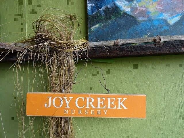 Garden Bloggers party at Joy Creek Nursery https://t.co/vVbgl06o3J #garden #gardening https://t.co/uGuk9ZRTnd (via Twitter http://twitter.com/TIMBERPROUK/status/826487192138702850) Garden Bloggers party at Joy Creek Nursery https://t.co/vVbgl06o3J #garden #gardening https://t.co/uGuk9ZRTnd