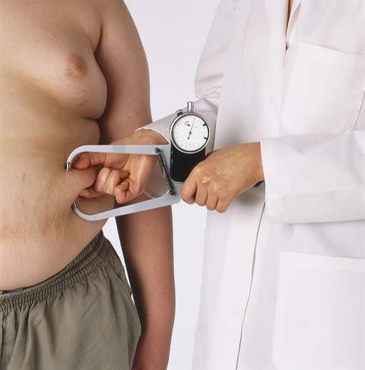 Lose post menopausal belly fat image 4