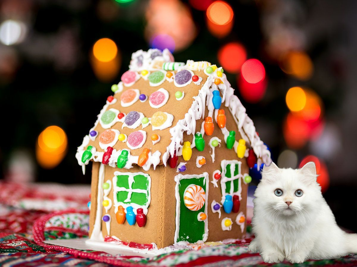 Pin by GONAWA on 41 GingerBread House Ideas Decoration