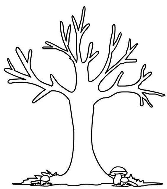 Disegni di alberi da colorare - Disegno per bambini con ...