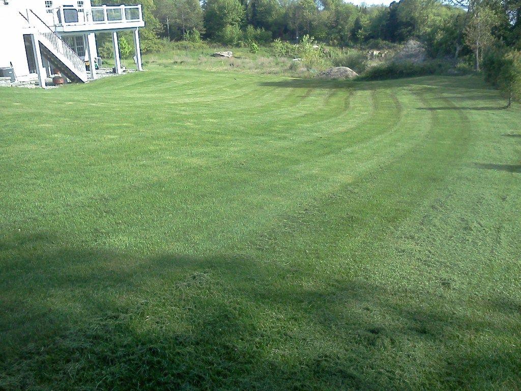 lawn Stripes waterford Diy lawn, Lawn striping, Lawn