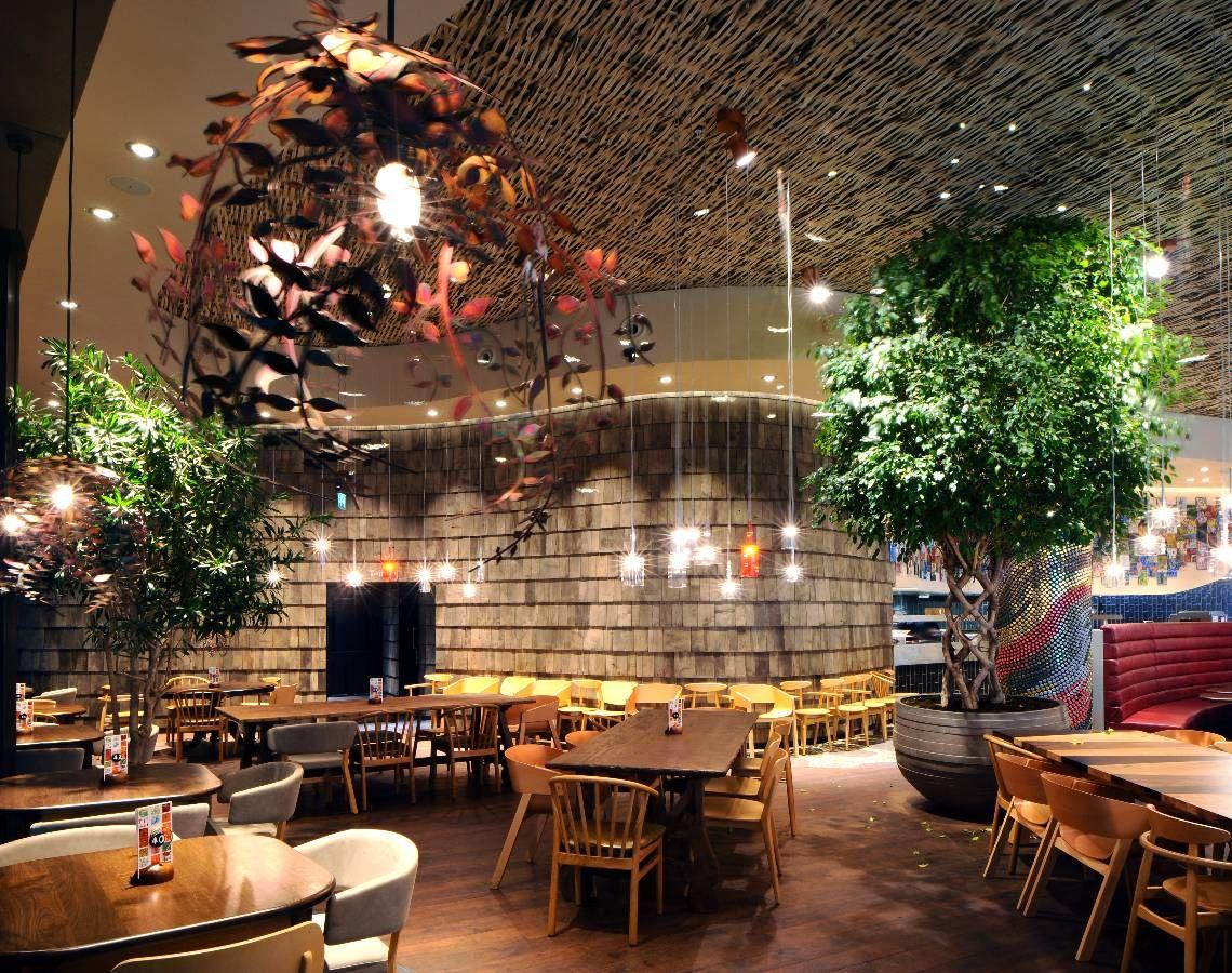 The Light Corporation Portfolio Restaurante