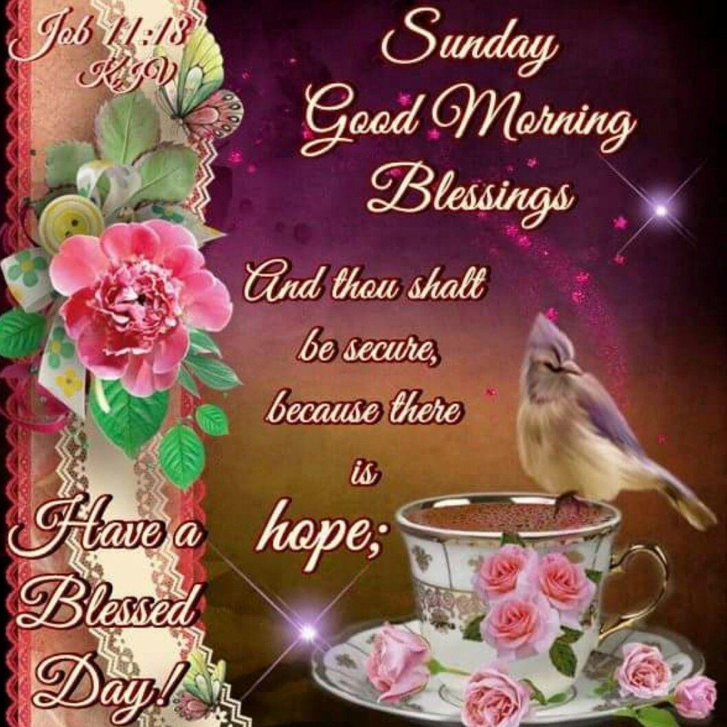 20+ Best Looking For Good Morning Sunday Blessings Prayer   Poppy ...