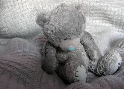 teddy bear and person Groups of people are usually noisier and smellier than a single person therefore, bears often become aware of groups of people at greater distances,.
