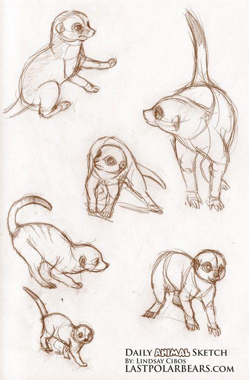 Daily_Animal_Sketch_041