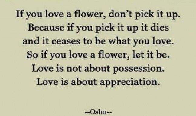 If You Love A Flower Dont Pick It Up Because If You Pick It Up It Dies And It Ceases To Be What You Love So If You Love A Flower