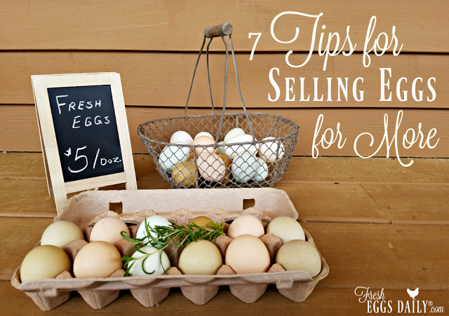 7 Tips To Help You Sell Your Farm Fresh Eggs For More Money Selling Eggs Fresh Eggs Best Egg Laying Chickens