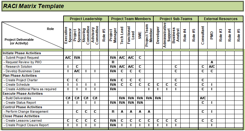 responsibility assignment matrix microsoft project
