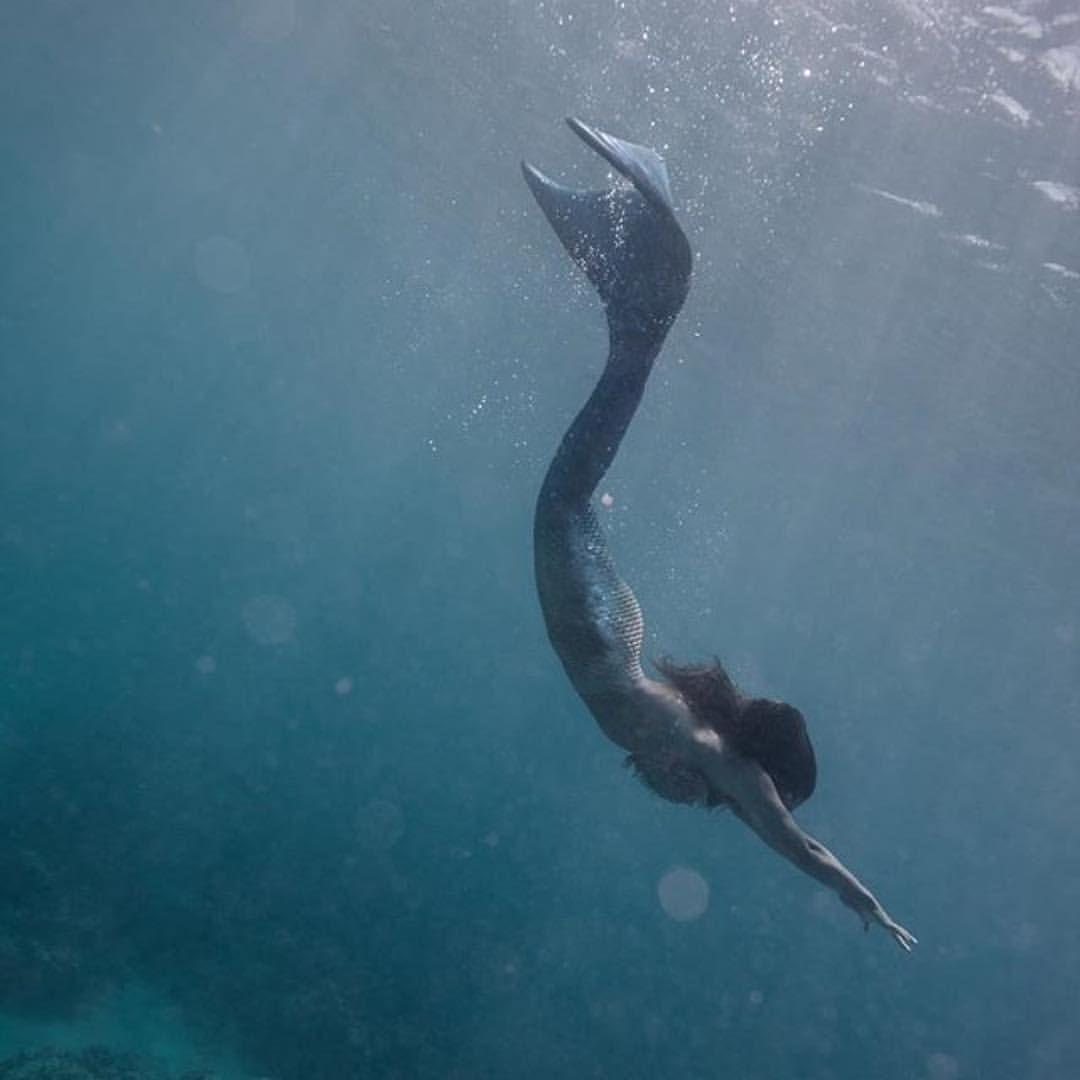Pin by Anne Catherine on { Fairytale } | Mermaid, Project mermaid