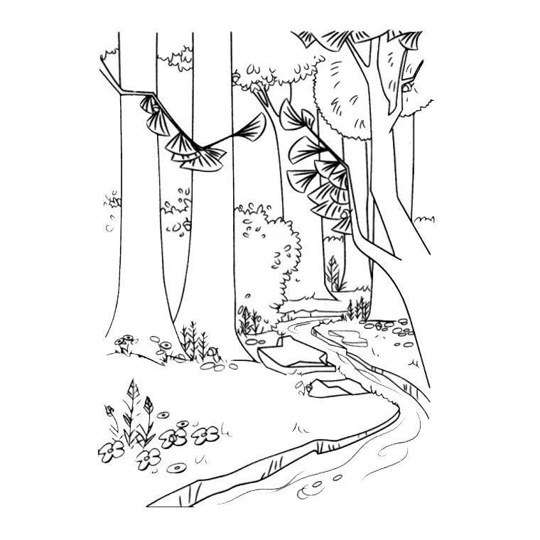 Coloriage Forêt | Desen / Boyama 57 | Pinterest