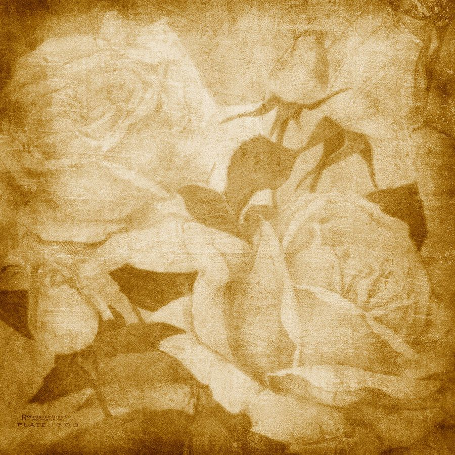 Image Detail For Vintage Background 7 By Dianazdesignz