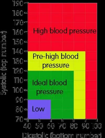 Pin By Stacy Vicks On Blood Pressure Pinterest Blood Pressure