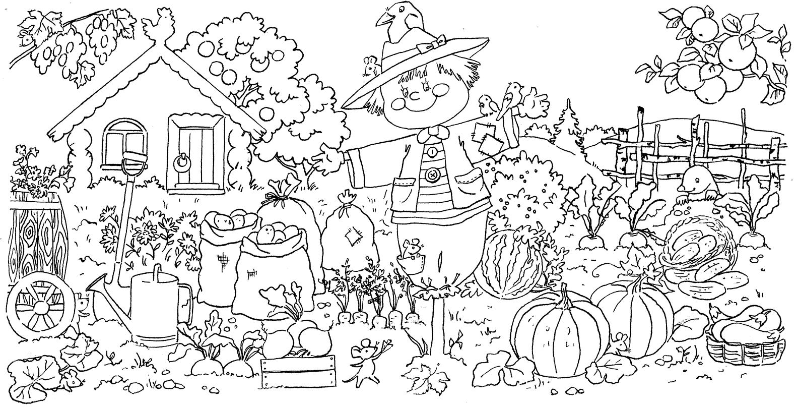 Раскраски с большими картинками осень