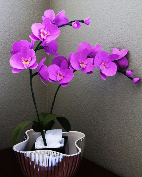 Phalaenopsis Orchid Paper orchid moth orchid by FlowerBazaar, $41.00 ...
