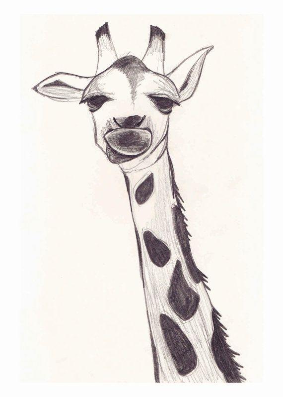 Print  Giraffe Sketch