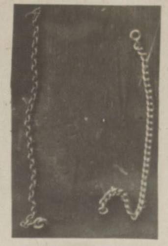 bracelet bits belonging to the grand duchesses.